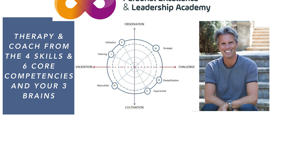 THE 6 COMPETENCES AND 4 SKILLS OF. ERICKSONIAN THERAPY COMBINED WITH THE 3 BRAINS THEORY