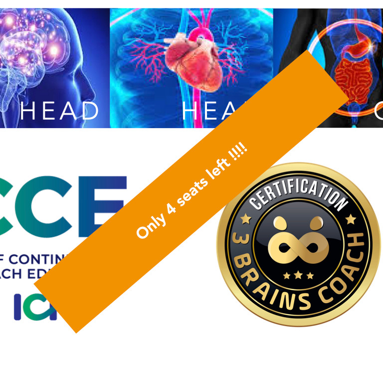 3 Brains Coach Certification Training ICF 30 CCEU's Online
