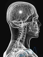 РусМедЦентр |  МРТ и УЗИ диагностика | МРТ Воронеже | УЗИ плода | УЗИ сосудов | МРТ головного мозга | МРТ позвоночника