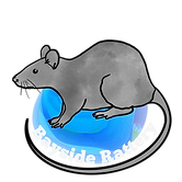 Bayside Rattery Logo (Transparent).png