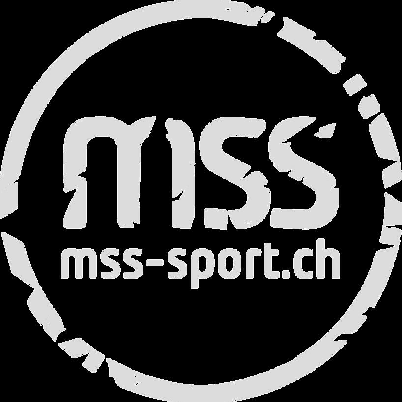 logo__mss_menue_world_of_badminton_edite