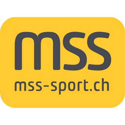 3_mss.png
