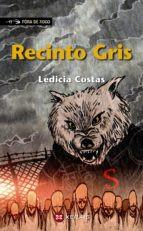 Recensión: Ledicia Costas, Recinto Gris
