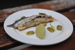 Broadbean icecream-salted anchovy