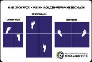 bases do karate goju ryu seigokan