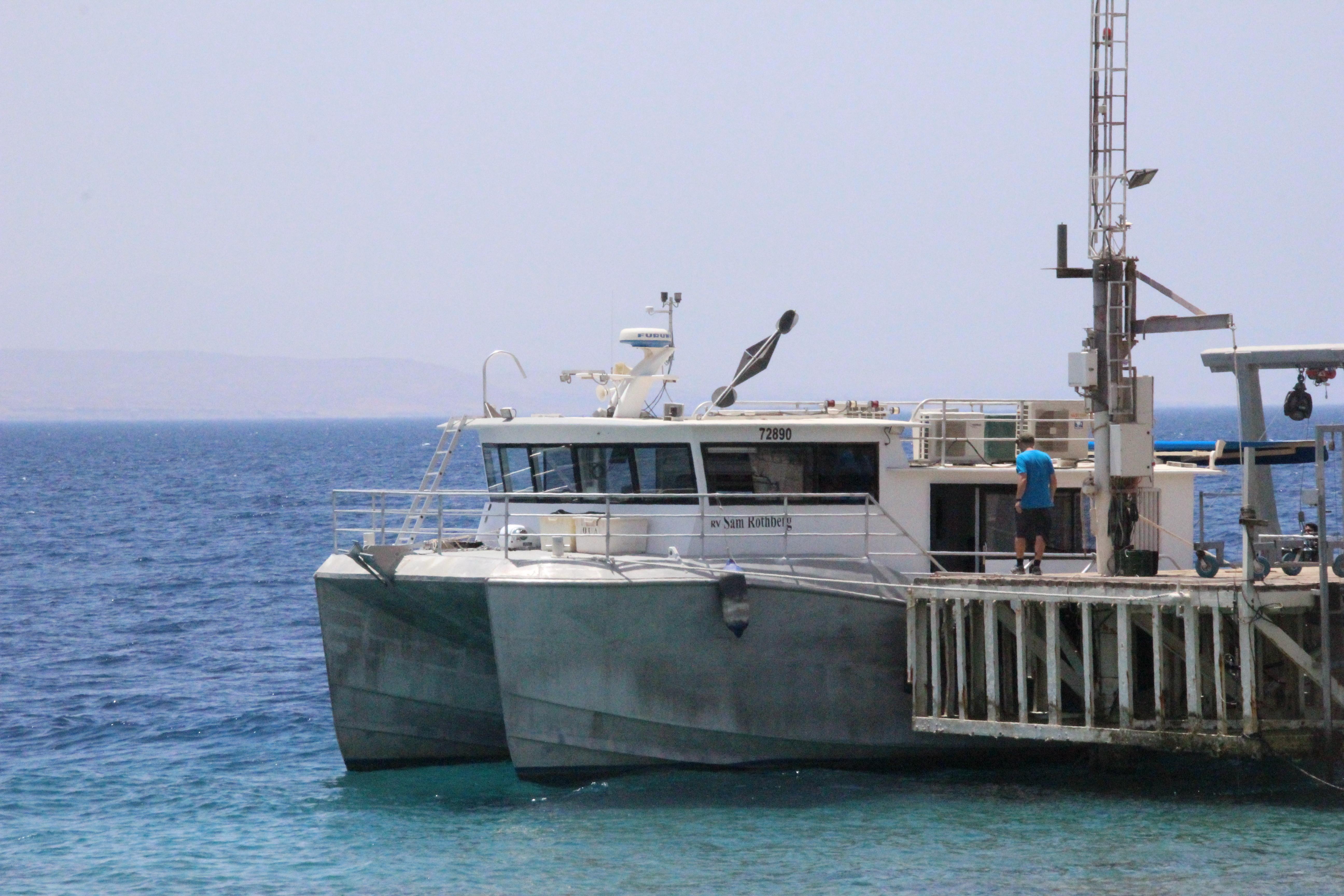 Sampling in Eilat, Red Sea