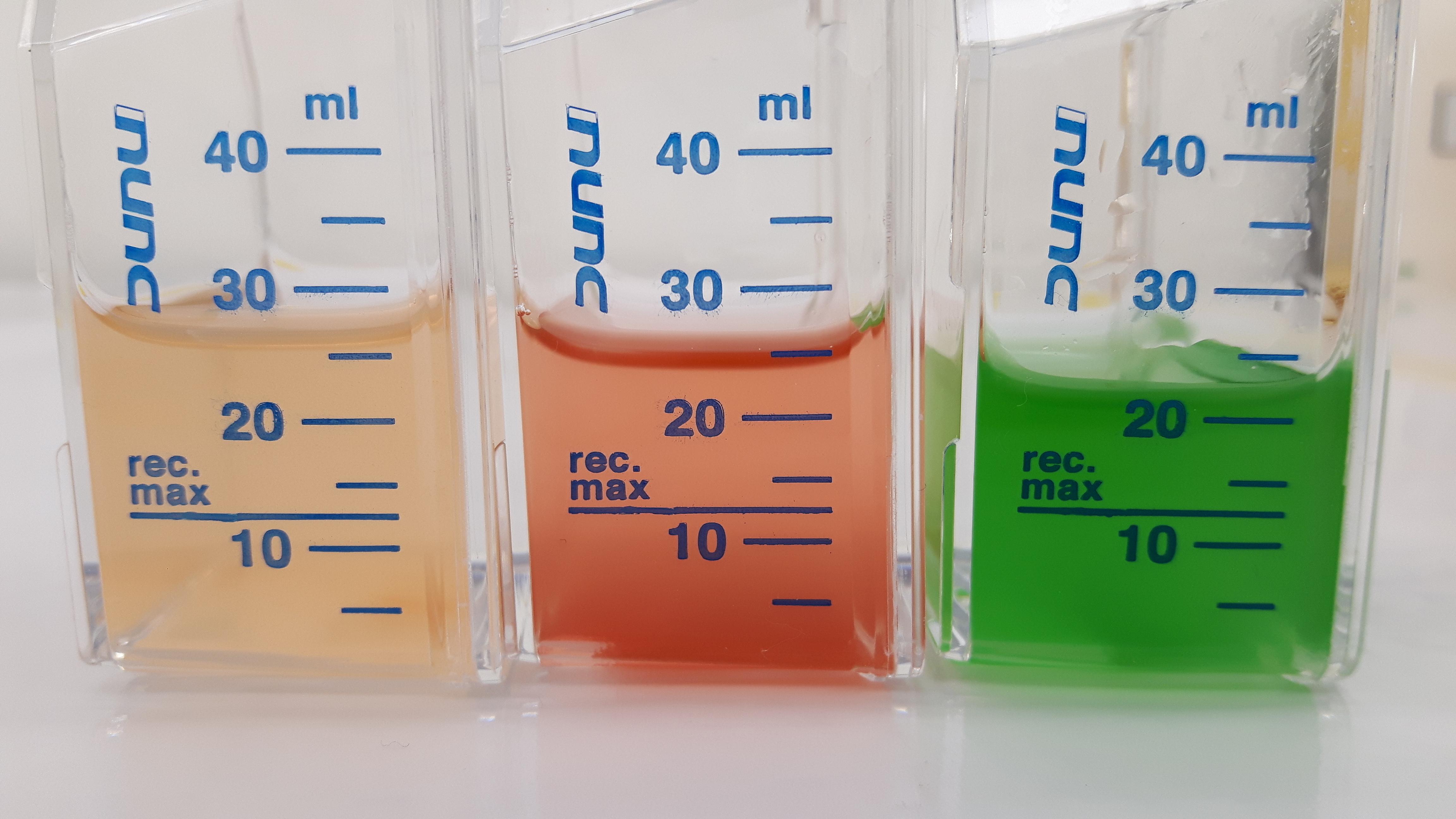 Synechococcus cultures