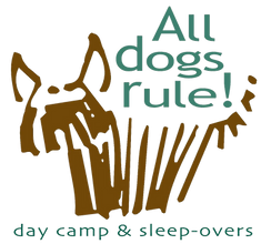 ADR Logo  png.png