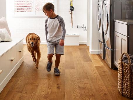 Laminate vs Hardwood Flooring: A Complete Guide