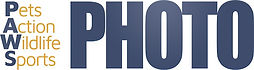 PAWS Photo Logo.jpg