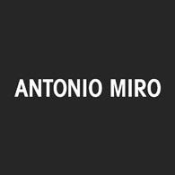 logotipo de ANTONIO MIRO SL