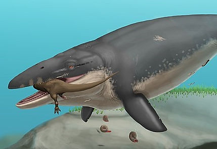 Mosasaurus_hoffmanni_life.jpg