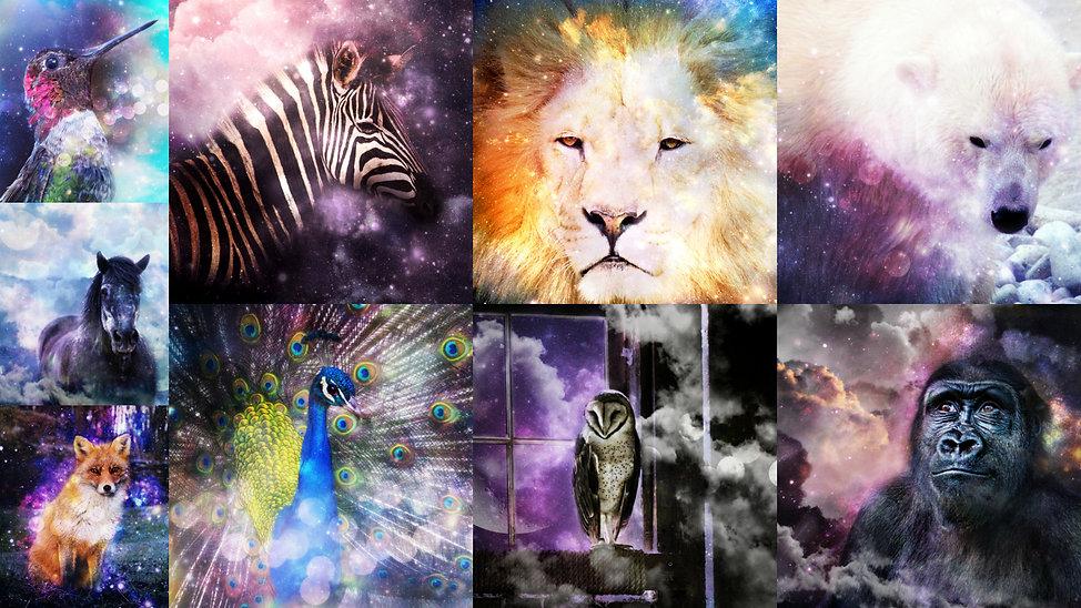 best power animal Collage.jpg
