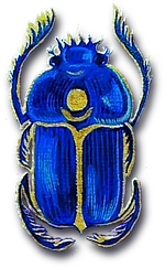 scarab_edited.png