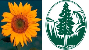 Anne Arundel County Sierra Club Award