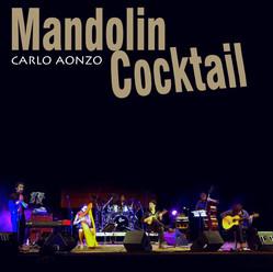 MANDOLIN COCKTAIL / 2010 / Carlo Aonzo