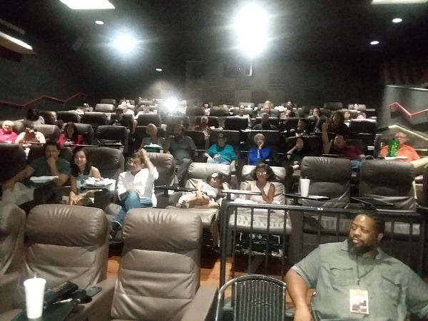 Pic 7 - Audience at the screening.jpg