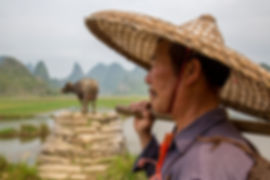 """Gorgeous Guilin photography tour: farmer with his buffalo yangshuo china."""