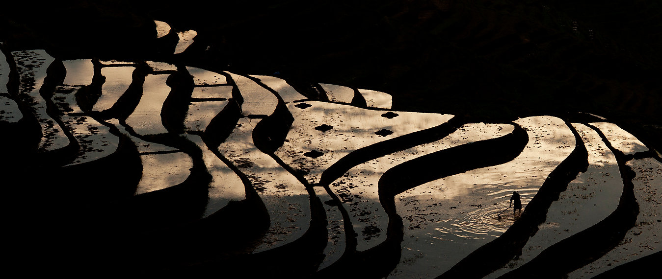 """Amazing Guilin photography tour: local farmer at sunrise longji rice terraces guangxi china."""