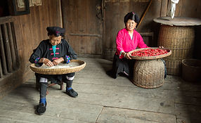 """Amazing Guilin photography tour: local yao people longji rice terraces longsheng."""