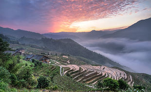 """Gorgeous Guilin photography tour: sunrise at the Longji rice terraces longsheng china."""