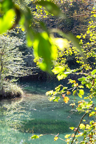 Foto Frühling Gewässer