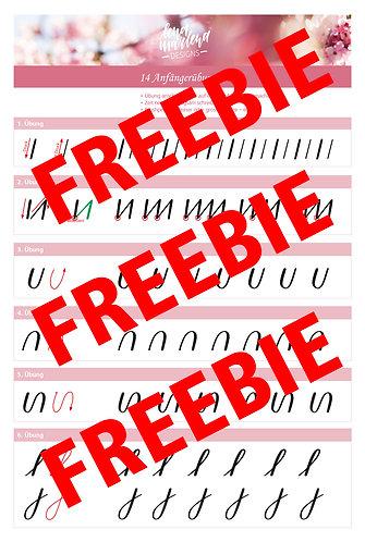 14 Anfängerübungen - FREEBIE (GUTSCHEIN-CODE: Freebie2019 = Fr. 0.-)