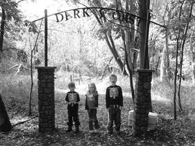 Dark Forest Haunted Walk