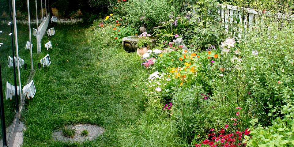 Atrium garden2