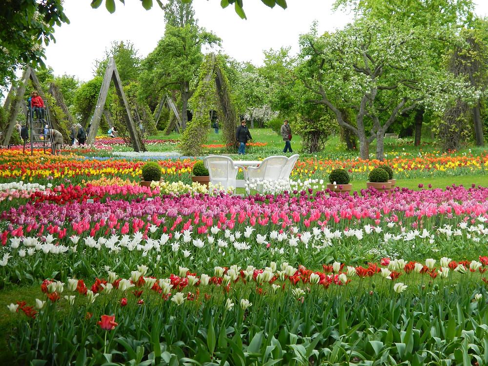 Britzer Garden, Berlin, Germany