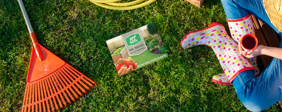 3D Box on grass with landscaper.jpg