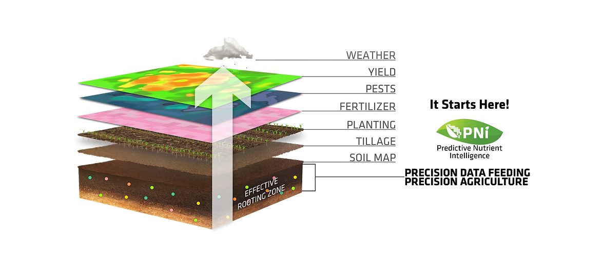 Soil Map Layers.png