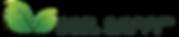 SS Logo.png