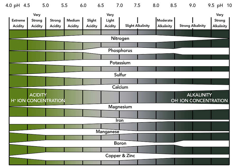 pH Alkalinity Scale for Website.png