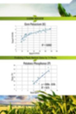 graph images.jpg