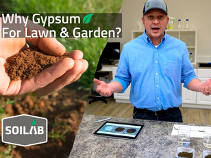 What is Gypsum and How Does It Help My Lawn & Garden?