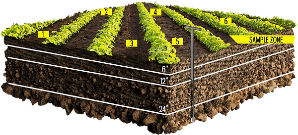 Soil Square.png