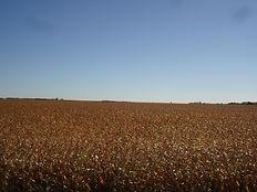 Lincoln County 017.JPG