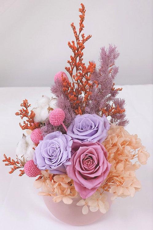 Pastel Coral