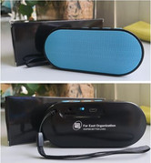Bluetooth Speaker with Logo Customization