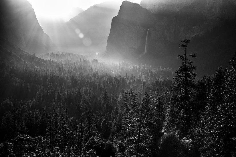 Adam Crews Imagery, Adam Crews, Adam Crews Photography, Yosemite National Park, Valley, Waterfall, Black & White Photograph