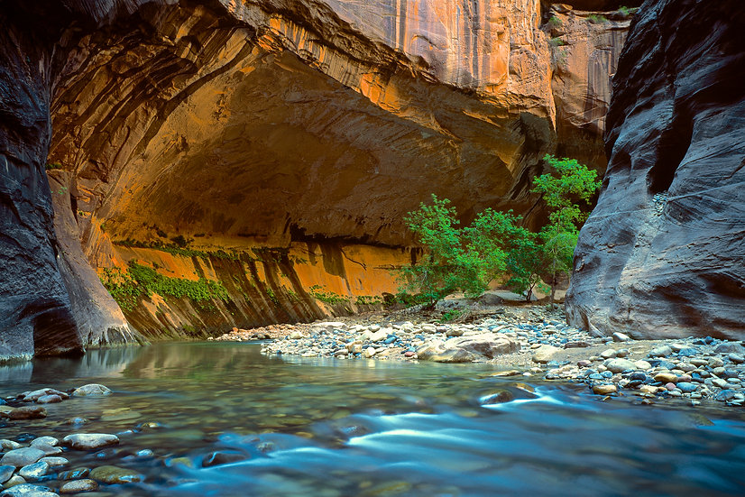 Adam Crews Imagery, Adam Crews, Adam Crews Photography, Zion National Park, The Narrows, Utah, USA, Zion, Canyon