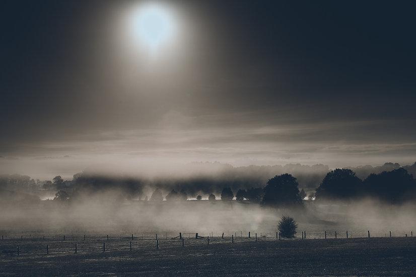 Misty Bowral