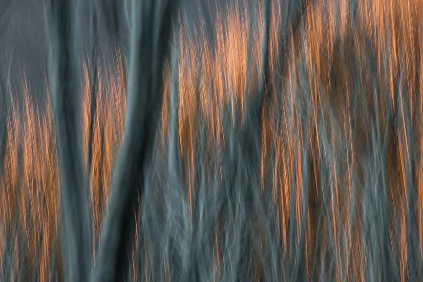 Adam Crews Imagery, Adam Crews, Adam Crews Photography, Falls Creek, Victoria, Abstract Photography, Abstract, Abstract Art