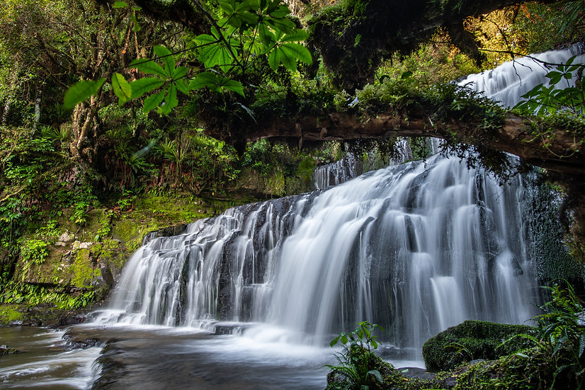 Adam Crews Imagery, Adam Crews, Adam Crews Photography, New Zealand, Waterfall, Purakaunui Falls, Catlins Forest Park, Lush