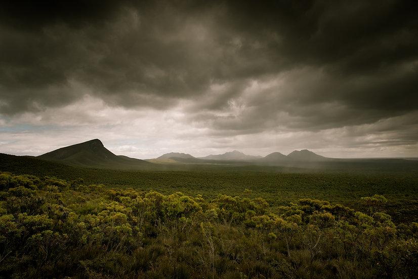 Stirling Storm