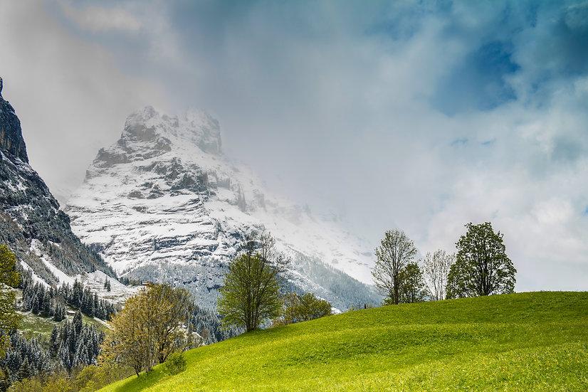 Adam Crews Imagery, Adam Crews, Adam Crews Photography, Snow Cap, Green Hills, Mountains, Grindelwald, Switzerland, Europe