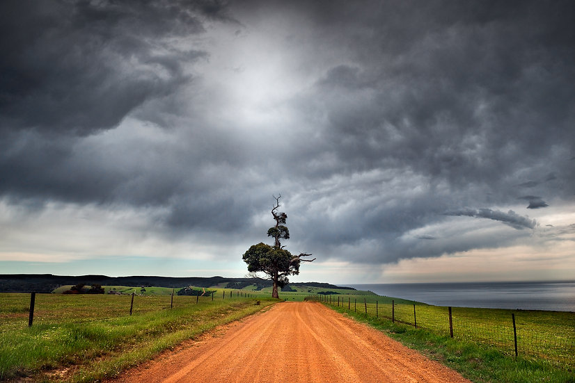 Lone Tree Road