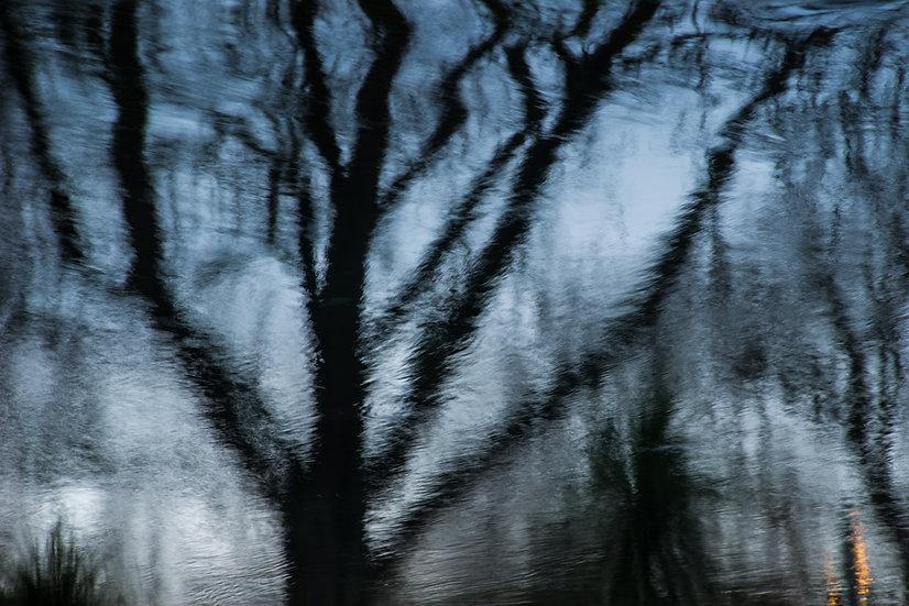 Christchurch Reflections