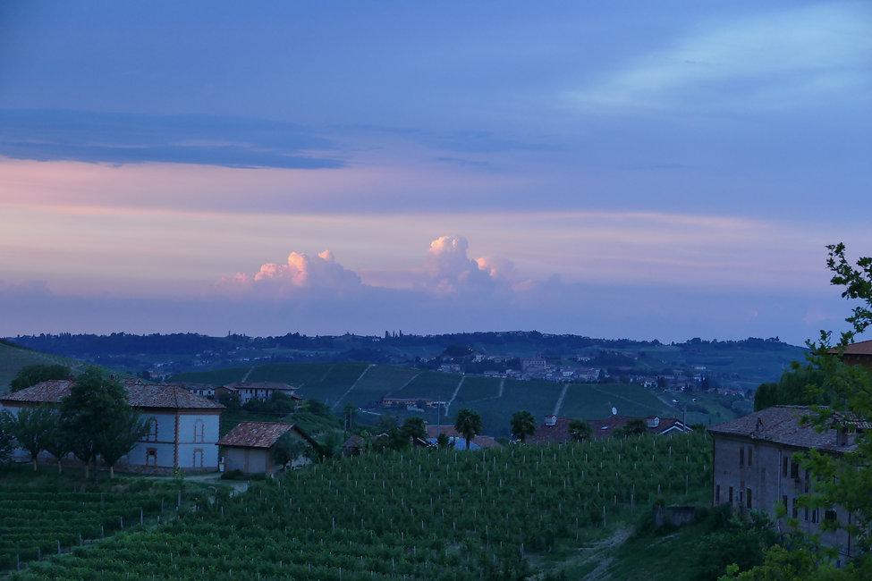 Wein Online Shop Piemont